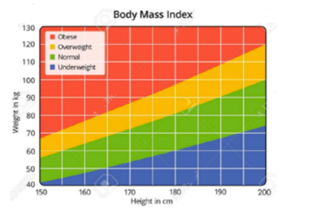 PTE 真题Body Mass Index 分析 Describe Image常见柱状图得分点